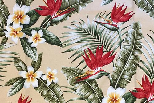 Maunawili Natural