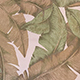 Banana_Leaf_Beige
