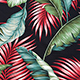 Banana_Leaf_Black_Hawaiian