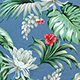Monstera_Hibiscus_Blue