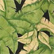 Banana_Leaf_Black