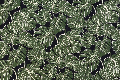 Monstera Jungle Green Black
