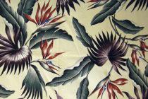 Bird Betel Palm Cream