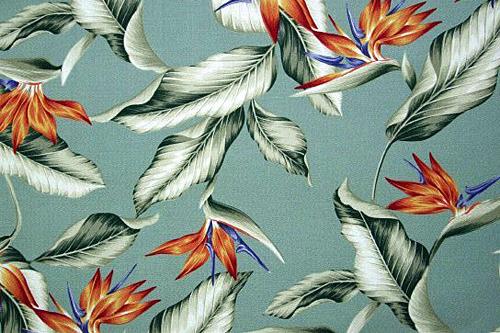 Bird Sage