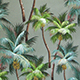 Palm_Trees_Aloe