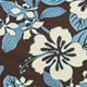 Tahitian_Haibiscus_Aqua_Brown