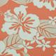 Tahitian_Haibiscus_Coral_Pink