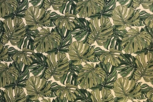 Deep Monstera Green<NEW>
