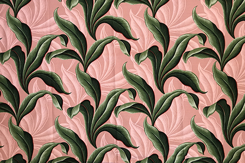 Retro Leaves Coral