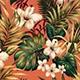 Hibiscus_Garden_Coral
