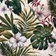 Hibiscus_Garden_Cream