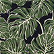 Monstera_Jungle_Green_Black