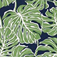 Monstera_Jungle_Green_Navy